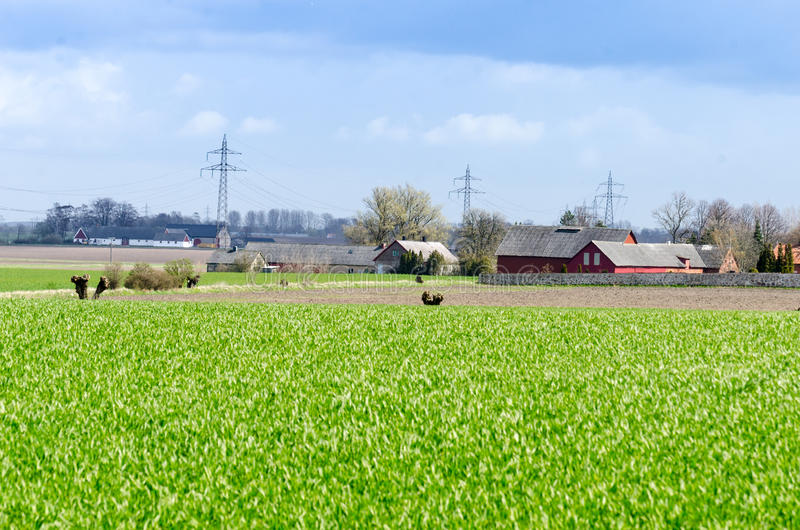 Download Agriculture Stock Photo - Image: 39740187