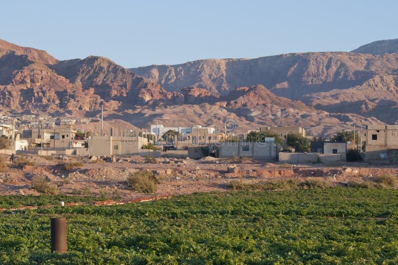 Agriculture dans Jordan Valley image stock