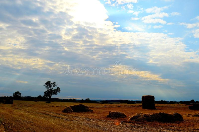 Agriculture de campagne image stock