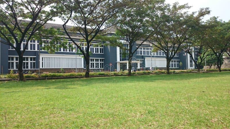 agriculture de campus qui est verte et fraîche de l'université agricole de Bogor photographie stock