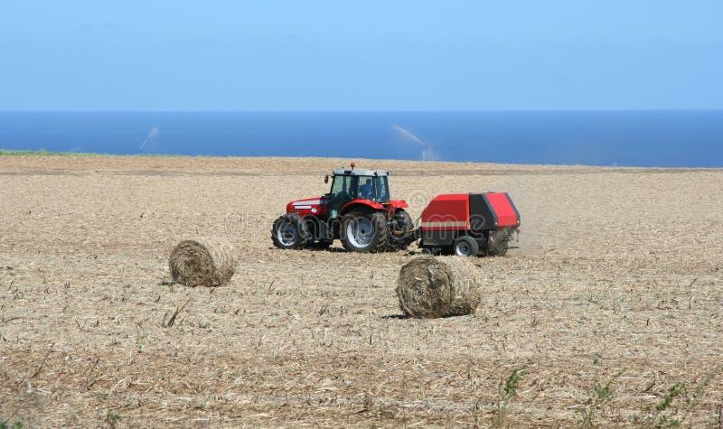 Agriculture de l'activité image libre de droits