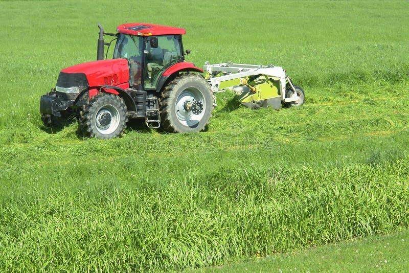 Agriculture de l'herbe de découpage de ferme photographie stock