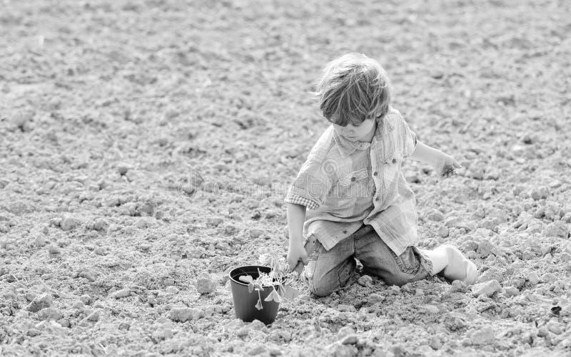 Agriculture et agriculture ?cologie et protection de l'environnement Jour de terre Dur?e neuve Ferme d'?t? Jardinier heureux d'en photo stock