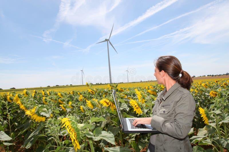 Agriculture et environnement photos libres de droits