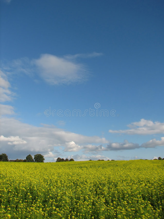 agriculture, farming, fields stock photography