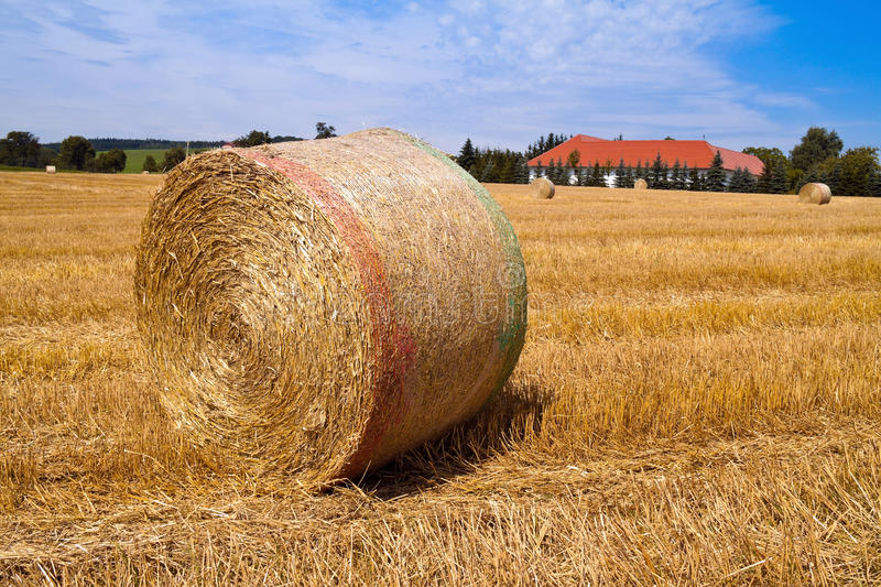 Agriculture. Field stock photo