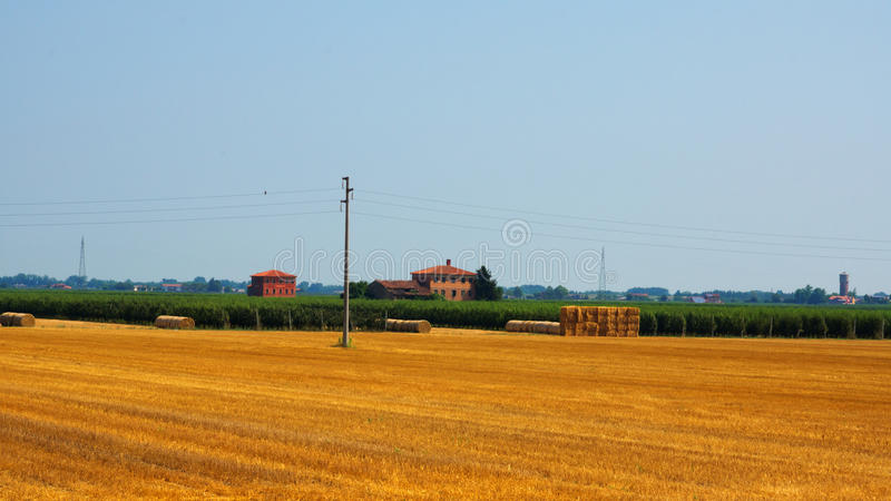 Download Agriculture field stock photo. Image of landscape, growing - 26067432