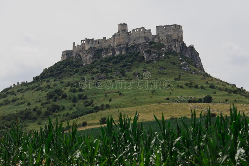 Agriculture field and Castle ruins of Spisky castle in Slovakia stock image