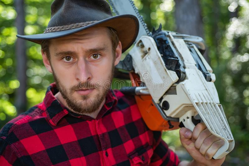 Agriculture and forestry theme. Illegal logging continues today. A handsome young man with a beard carries a tree. Woodworkers lumberjack royalty free stock photos