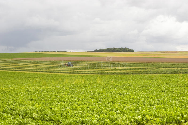 Download Agriculture in France stock image. Image of color, cloudy - 27535379