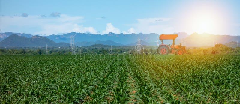 Agriculture futée avec l'industrie 4 d'agriculture 0 concepts, tracteur d'utilisation d'agriculteur dans la ferme pour labourer,  image libre de droits