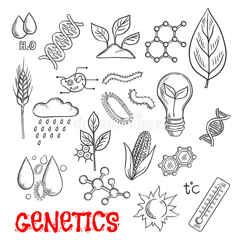 Agriculture and genetic technology sketch icons royalty free illustration
