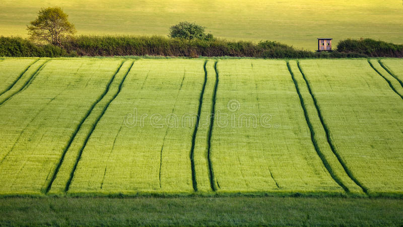 Agriculture in Germany royalty free stock photography