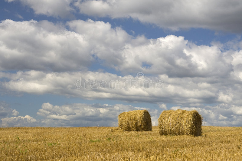 Agriculture - Haystack. On harvested field stock images