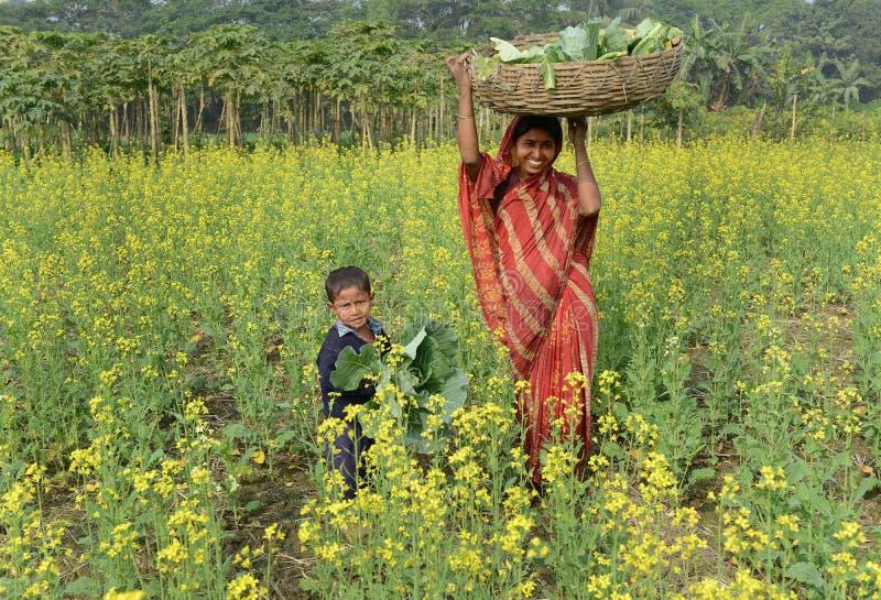 Agriculture indienne images libres de droits