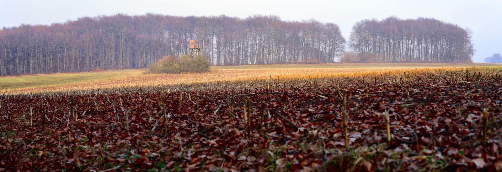 Download Agriculture Landscape Royalty Free Stock Photos - Image: 25610808