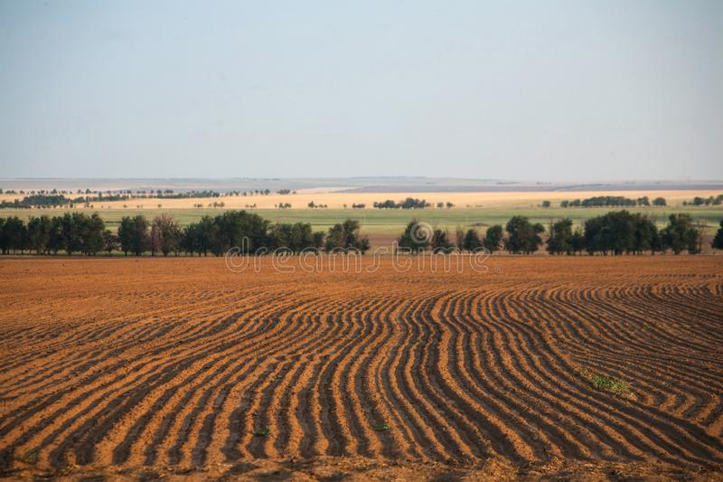 Agriculture landscape royalty free stock photos