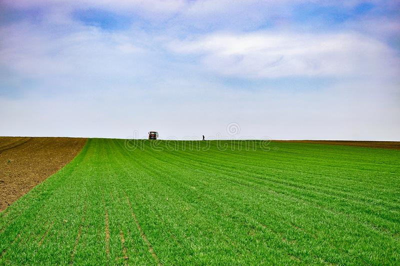 Agricultural landscape.Wheat field. Tractor and farmer in the distance. Agriculture landscape. Wheat field. Tractor and farmer in the distance royalty free stock photography
