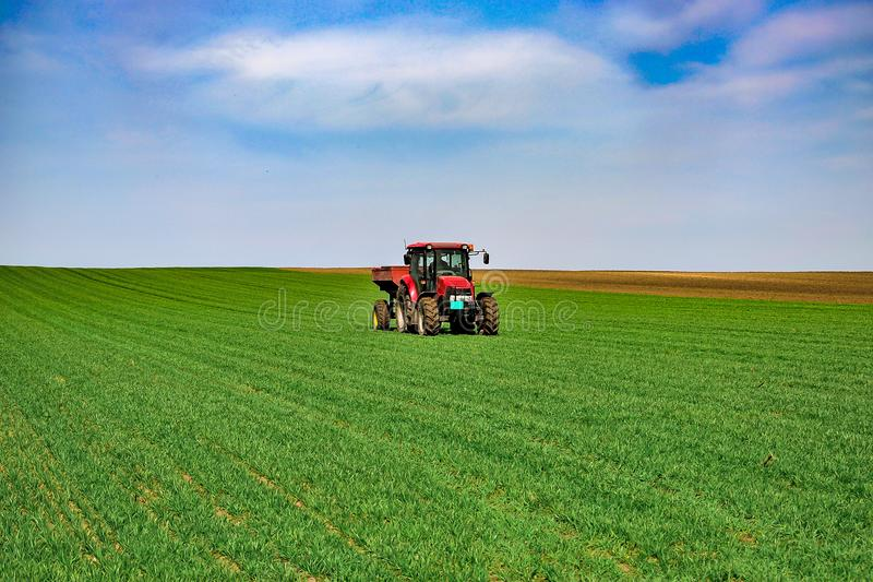 Tractor work on the field. Applying fertilizer in spring. Agriculture landscape. Tractor spreading mineral fertilizer in wheat field stock photo