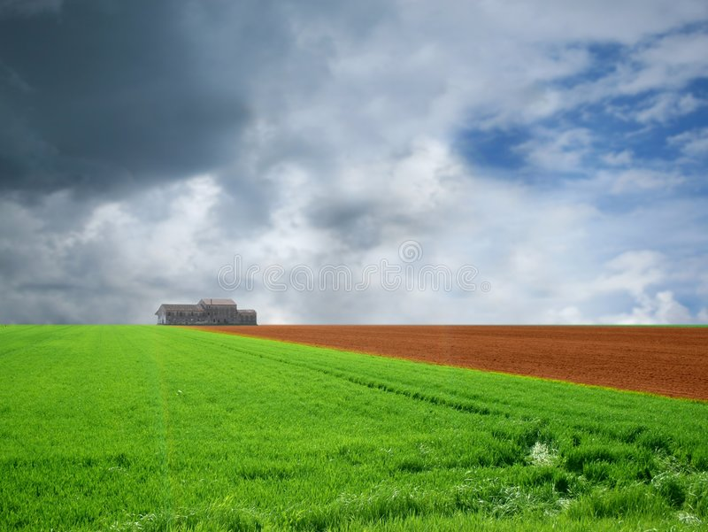 Download Agriculture landscaped stock photo. Image of path, farm - 4790036