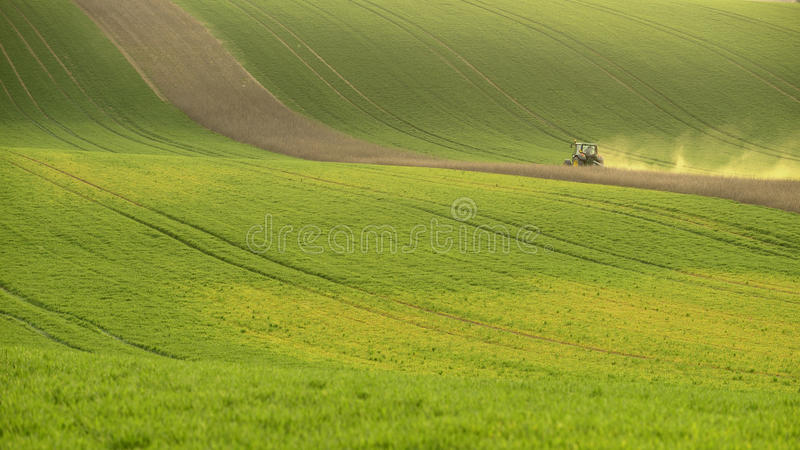 Agriculture on Moravia rolling hills with wheat filds and tractor. Agriculture on Moravia rolling hills with wheat fields in southern Moravia in the Czech royalty free stock images
