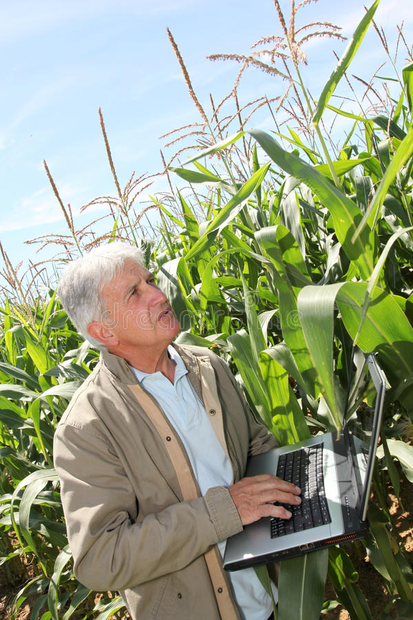Agriculture and science royalty free stock photo