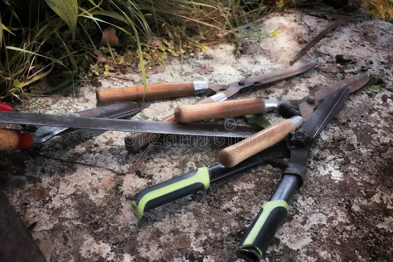 Agriculture tools to clean garden plants. Agriculture tools such as scissors to cut branches and bushes, blinds. Cleaning the garden of the house, removing the stock photo