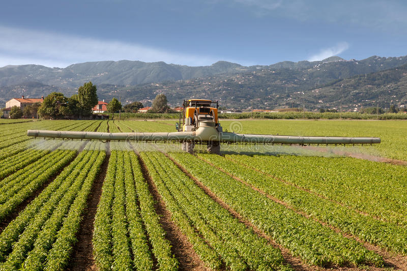 Agriculture, tractor spraying pesticides on field farm stock photo