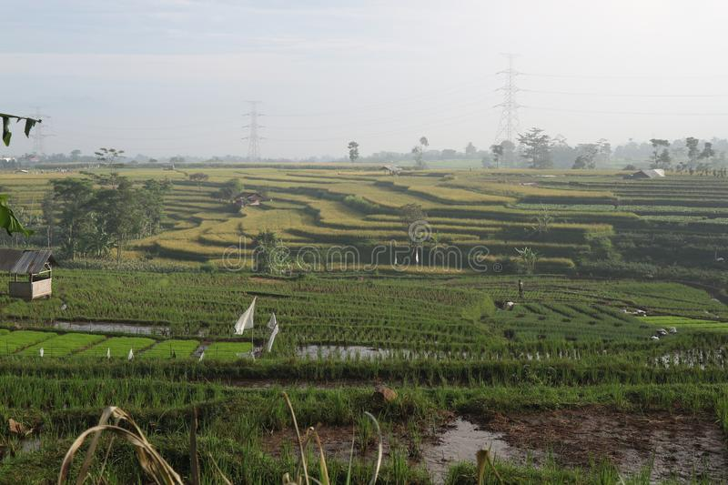 Agriculture village in bandung, indonesian. Agriculture village in bandung stock images