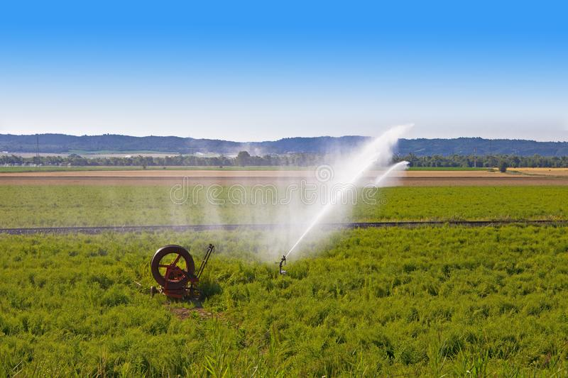 Agriculture water spray stock image