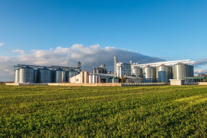 Agro-elaborazione della pianta per l'elaborazione ed il silos per lavaggio a secco e stoccaggio dei prodotti agricoli, della fari fotografie stock libere da diritti