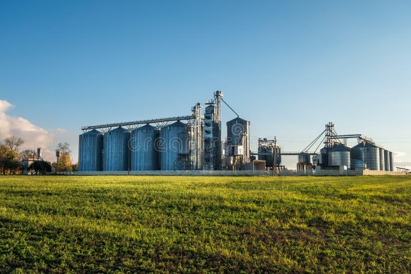 Agro-proceso de la planta para procesar y los silos para la limpieza en seco y el almacenamiento de productos agr?colas, de la ha imagen de archivo libre de regalías