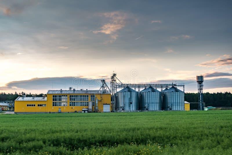 Agro-proceso de la planta para procesar y los silos para la limpieza en seco y el almacenamiento de productos agr?colas, de la ha foto de archivo libre de regalías