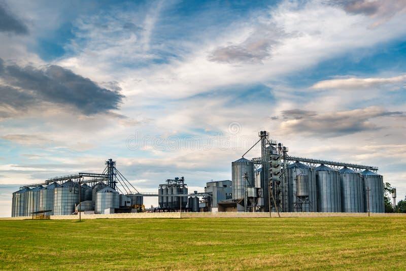 Agro-proceso de la planta para procesar y los silos para la limpieza en seco y el almacenamiento de productos agr?colas, de la ha fotos de archivo