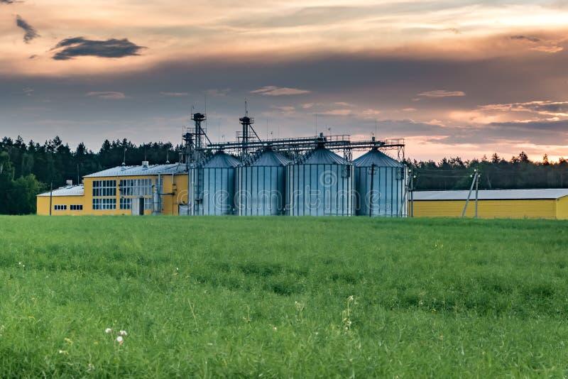 Agro-proceso de la planta para procesar y los silos para la limpieza en seco y el almacenamiento de productos agr?colas, de la ha foto de archivo