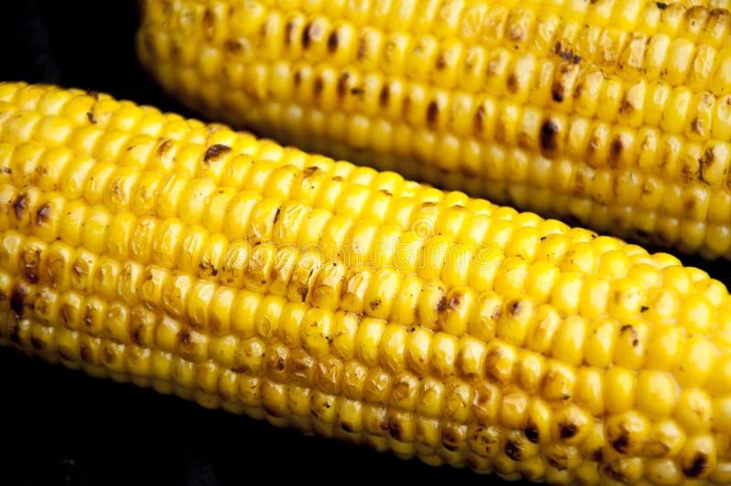 Agro-verwerkt de industrie royalty-vrije stock foto