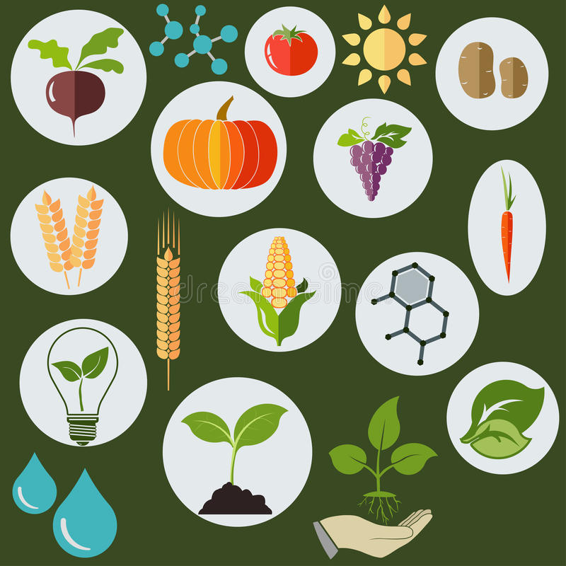 Agronomic icons flat style - vector. Agronomic Agricultural icons flat style, Science biology research chemical formulas, plants, sun and water drops - vectors royalty free illustration