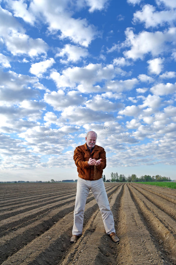 Agronomist on the field. Professional agronomist testing ground on the field stock photos