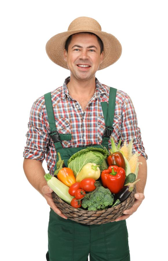 Agronomist with healthy vegetables. On white background royalty free stock photography