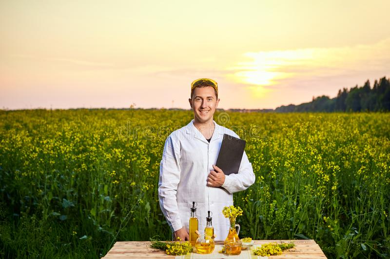 Agronomist man or farmer examine rapeseed oil using tablet on the background of  blossoming rape canola field. Agronomist man or farmer examine rapeseed oil royalty free stock images