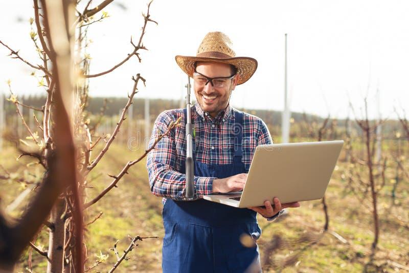 Agronoom met laptop die zich in perenboomgaard bevindt en boom controleert royalty-vrije stock afbeelding