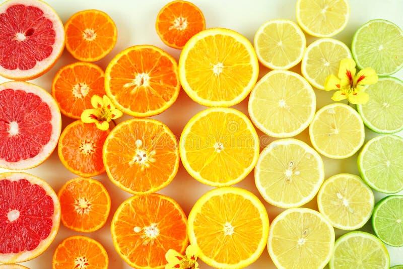 Agrumes comprenant des pamplemousses, des mandarines, des oranges, des citrons et des chaux de sang photo stock