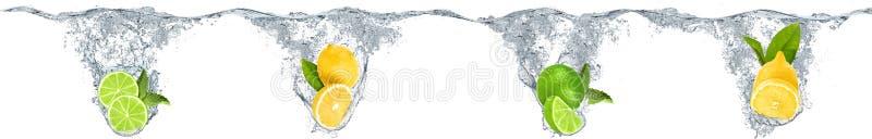 Agrumes tombant dans l'eau illustration libre de droits