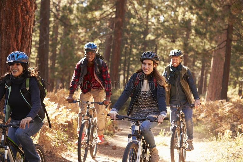 Agrupe amigos nos capacetes que montam bicicletas em uma floresta, fim acima imagem de stock