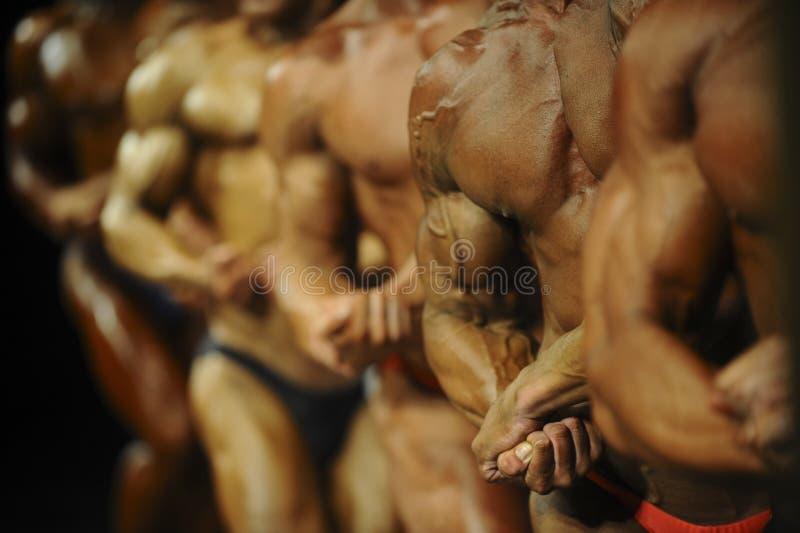 Agrupe a los culturistas de los atletas que plantean la mayoría de las competencias musculares del levantamiento de pesas fotografía de archivo