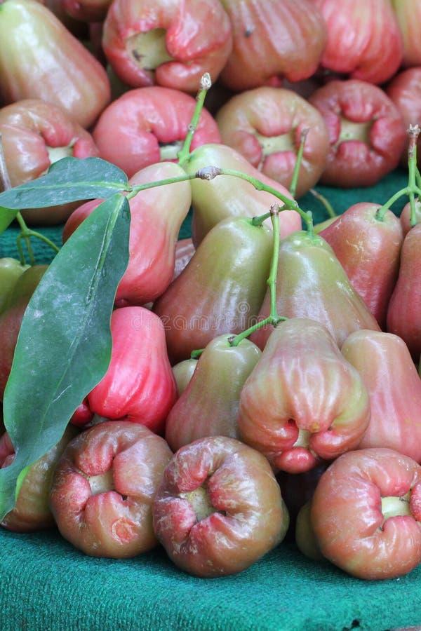 Agrupe a maçã cor-de-rosa orgânica fresca multicolorido do close-up com a folha verde no mercado de produto fresco fotos de stock royalty free
