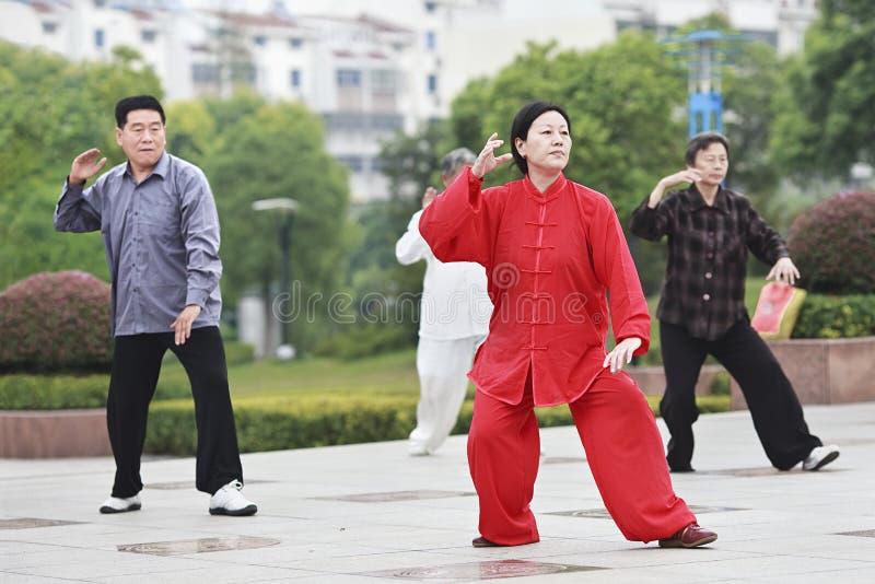 Agrupe a Tai Chi practicante en la madrugada, Yangzhou, China fotografía de archivo libre de regalías