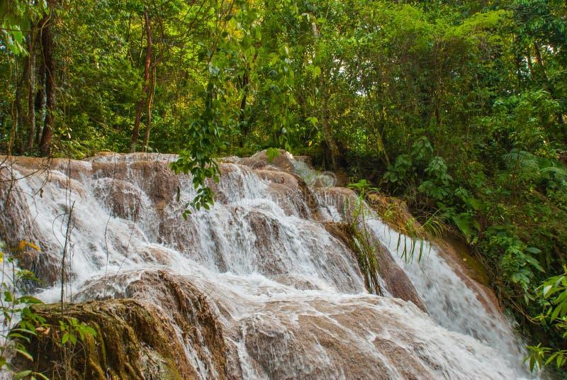 Agua Azul, Чьяпас, Palenque, Мексика Вода пропускает через утесы Красивый пейзаж водопада в лесе стоковое изображение rf