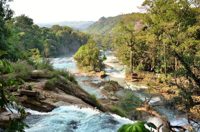 Agua Azul Chiapas Mexico de Waterfal photos libres de droits
