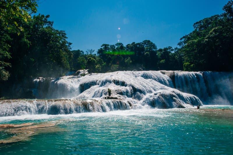 Agua Azul, Chiapas, Palenque, Meksyk Widok zadziwiająca siklawa fotografia stock
